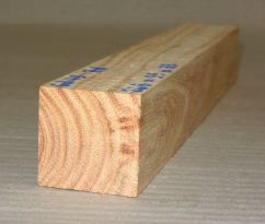 Gd049 Honey Locust 268 x 35 x 35 mm