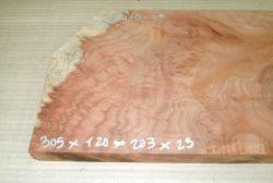 Re116 Redwood Maser, Sequoia Vavona Maser 305 x 180 x 23 mm
