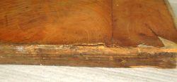Es500 Antikes Möbelteil Esche furniert 970 x 205 x 25 mm