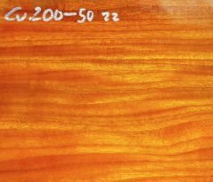 Cv200-5 Chakte Viga, Paela Schalenrohling 200 x 200 x 50 mm