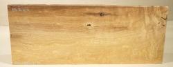 Mb080 Maulbeerholz aus der Maulbeerallee Zernikow 580 x 225 x 5 bis 40 mm