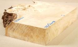 Pp305 Pappel Maser Block 295 x 230 x 58 mm