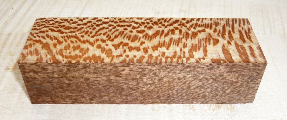 Platane Griffblock 120 x 40 x 30 mm