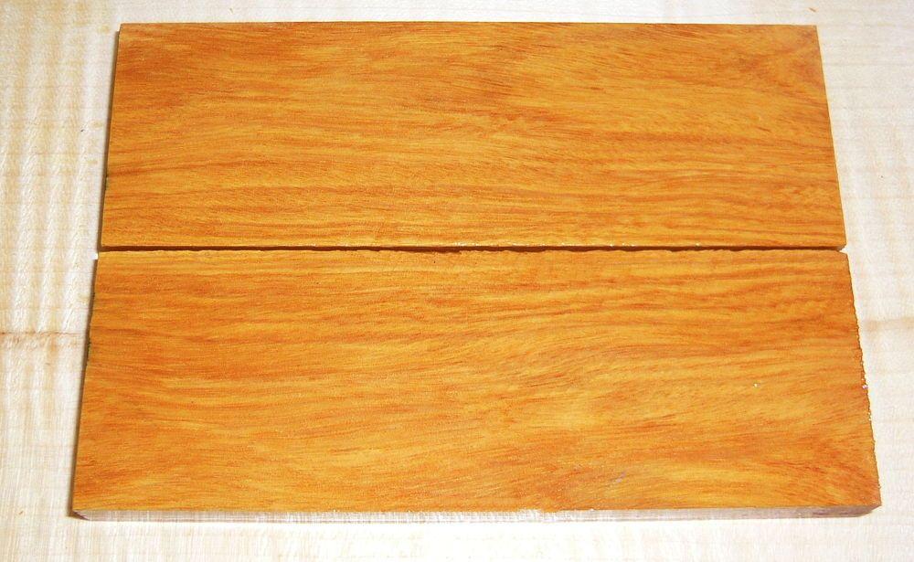 Andrampotsy Griffschalen 120 x 40 x 10 mm
