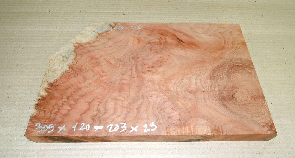 Re116 Redwood Burl, Sequoia Vavona Burl 305 x 180 x 23 mm