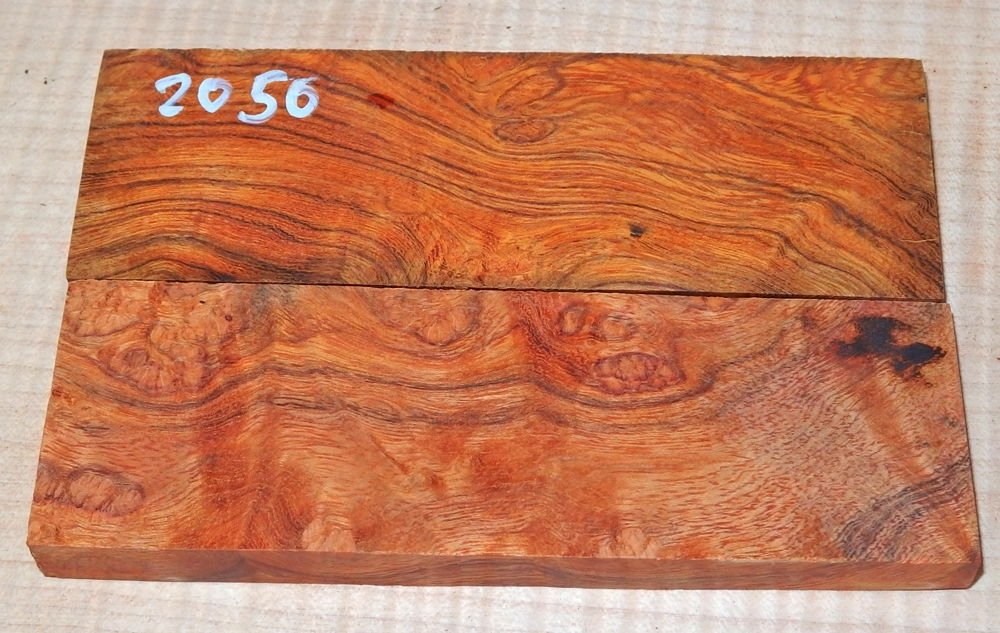 2050 Desert Ironwood Burl Scales 120 x 40 x 9 mm