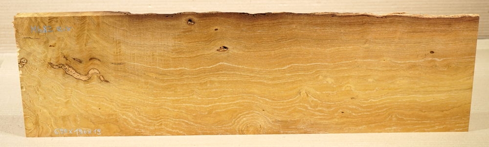 Mb082 Mulberry Wood from Zernikow Monument 690 x 190 x 19 mm