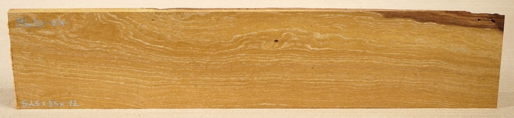 Mb092 Mulberry Wood from Zernikow Monument 400 x 100 x 8 mm