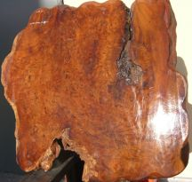Si012 Sindora Burl Slab XXL Natural Edge Tabletop ca. 110 x 100 cm, ca. 25-50 mm