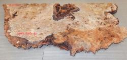 Pp280 Pappel gestockt Maserkappe 600 x 300 x 40 mm