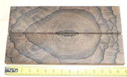 Ziricote Crosscut (Rasierer-) Griffschalen 140 x 40 x 4 mm