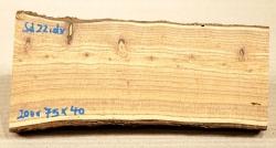 Sd022 Sea-Buckthorn Log Cutoff 200 x 75 x 40 mm