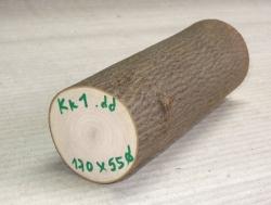 Kk001 Kornelkirsche, Hartriegel 170 x 55ø mm